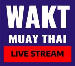 live stream thai boxing lessons